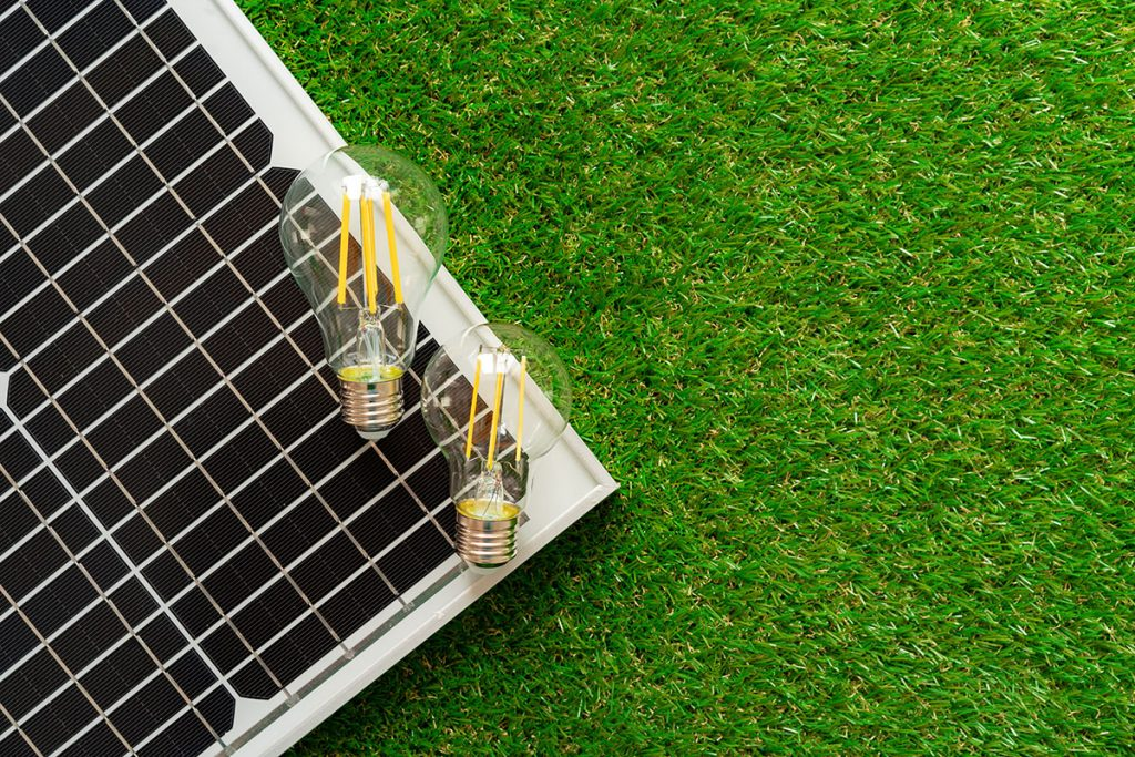 solar energy panel and light bulb